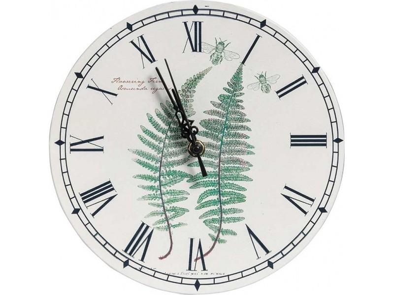 Garden green zegar paproć