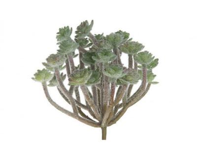 Rośliny sztuczne Sukulent