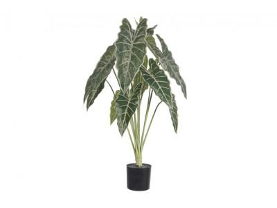Rośliny sztuczne Syngonium/donica