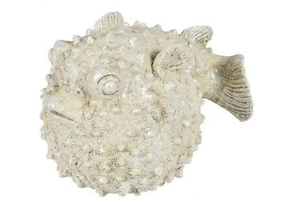 Cremona Ryba
