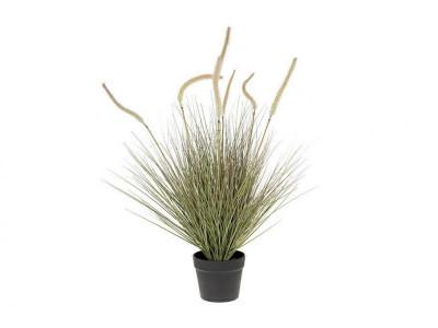 Rośliny sztuczne Rozplenica B/donica