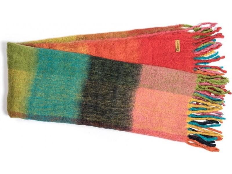 Bresso Koc kolor 2